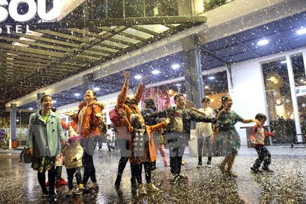 Ciudad vietnamita de Da Nang albergara a gran numero de turistas en Ano Nuevo hinh anh 1