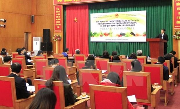 Oportunidades para exportaciones agricolas vietnamitas a China hinh anh 1