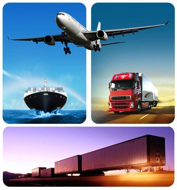 Presentan sistema de orden de servicios logisticos en linea hinh anh 1