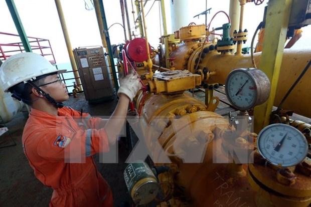 Vietnam explora con eficiencia gas en Mar del Este hinh anh 1