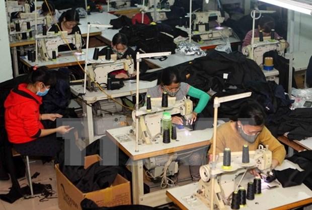 Registran en Ciudad Ho Chi Minh alta demanda de obreros a finales de ano hinh anh 1