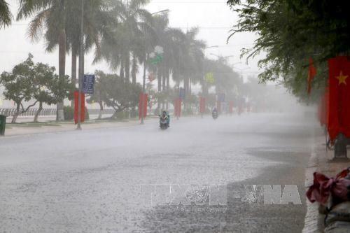 Sector meteorologia e hidrologia de Vietnam determinado a modernizarse hinh anh 1