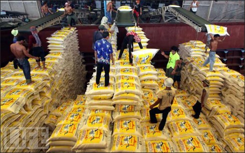 Exportaciones de Tailandia logran record en los ultimos seis anos hinh anh 1
