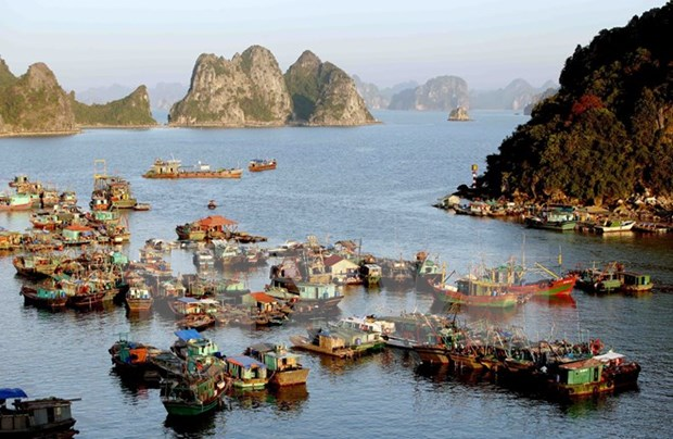 Quang Ninh preve acoger a 12 millones de visitantes en 2018 hinh anh 1