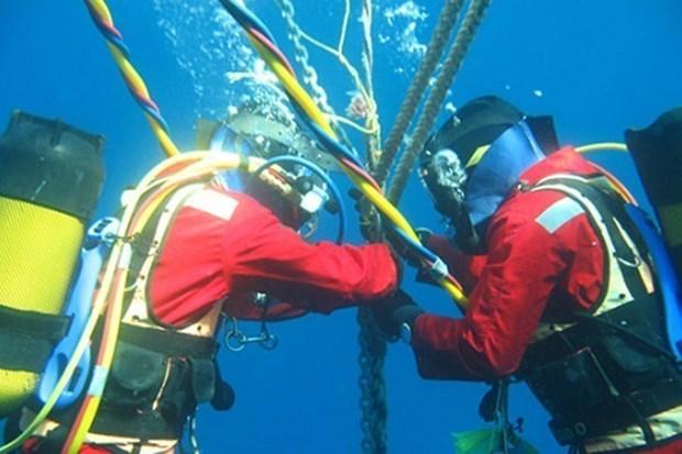 Cable submarino Asia- Pacifico sera preparado fin de esta semana hinh anh 1