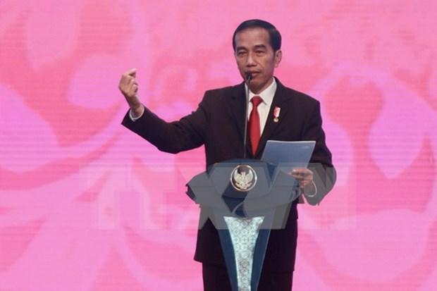 Indonesia crea agencia cibernetica para combatir extremismo y noticias falsas hinh anh 1