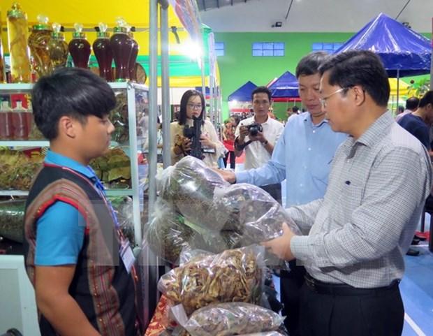 Reportan nutrida participacion en primer mercado de ginseng Ngoc Linh en 2018 hinh anh 1