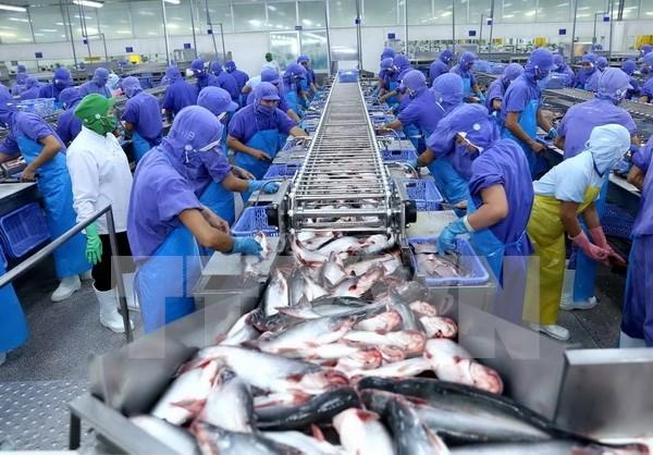 Vietnam busca ingresar fondo multimillonario por exportaciones productos acuaticos en 2018 hinh anh 1