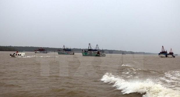 Vietnam refuerza su capacidad de enfrentamiento a desastres naturales hinh anh 1