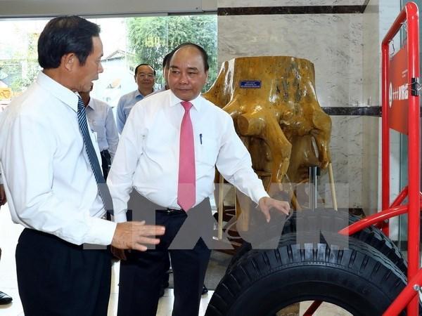 Premier de Vietnam orienta el desarrollo del sector nacional de caucho hinh anh 1