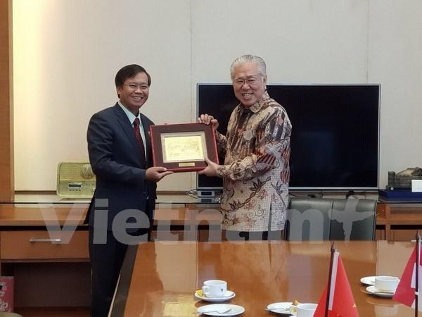 Relacion Vietnam- Indonesia contribuye al desarrollo de ASEAN hinh anh 1