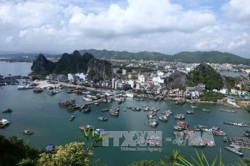 Evaluan viabilidad del proyecto de establecer unidad administrativa y economica especial Van Don hinh anh 1