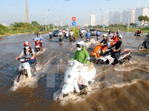 Urgen soluciones efectivas para inundaciones en Ciudad Ho Chi Minh hinh anh 1