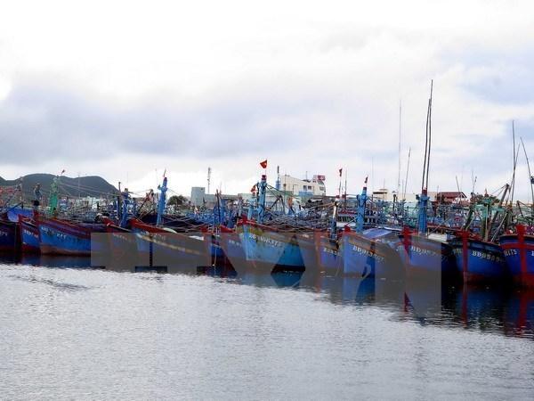 Provincia centrovietnamita promueve pesca en alta mar hinh anh 1
