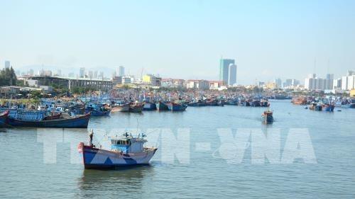 Thanh Hoa trabaja por combatir contra pesca ilegal hinh anh 1