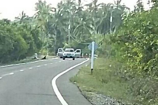 Atentado con bombas en provincia de Tailandia deja seis heridos hinh anh 1