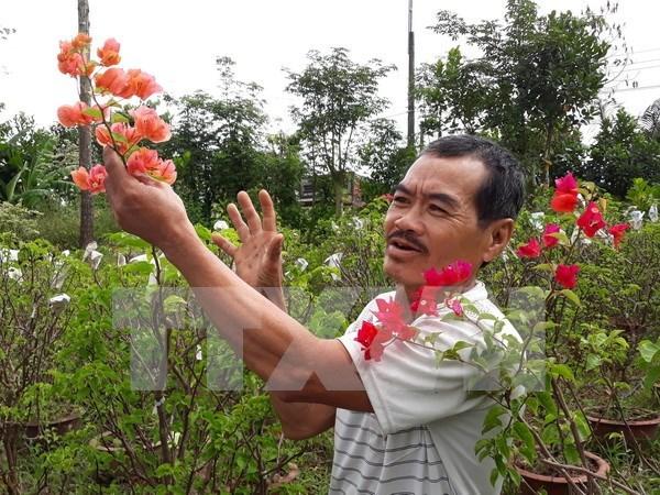 Asociacion de Agricultores de Vietnam traza orientaciones para su desarrollo hinh anh 1