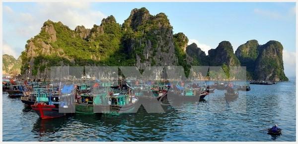 Aldea vietnamita entre las mas hermosas del mundo hinh anh 1