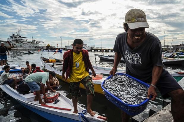 Indonesia aumentara inversion en sectores maritimos y acuaticos hinh anh 1