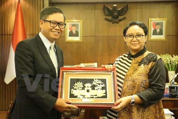 Vietnam e Indonesia continuaran contribuyendo activamente a ASEAN hinh anh 1