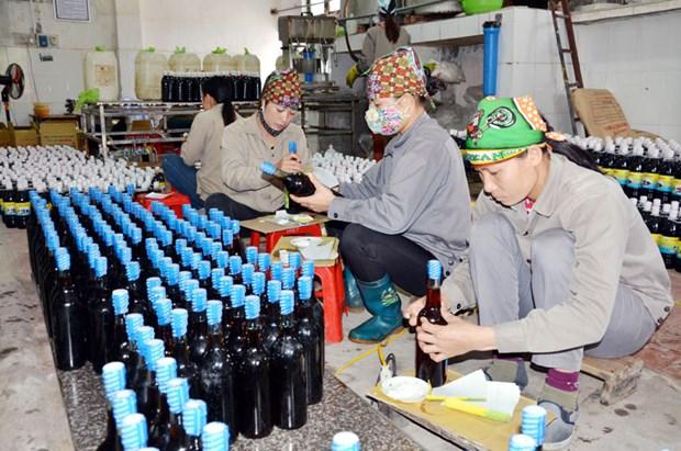 Quang Ninh despliega programa de estampillas electronicas para productos locales hinh anh 1