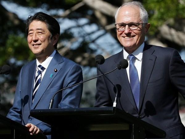Australia y Japon firmaran CPTPP antes de marzo hinh anh 1