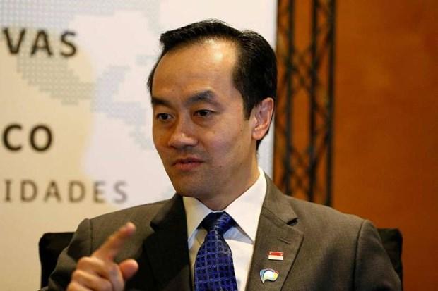 Singapur se esfuerza por convertir a ASEAN en area de integracion economica hinh anh 1