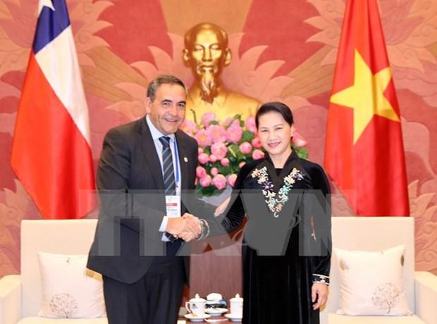 Chile confirma prioridad de impulsar cooperacion con Vietnam hinh anh 1