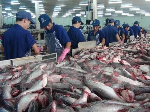 Vietnam mejora calidad de productos acuaticos para materializar meta de exportaciones hinh anh 1