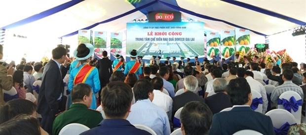 Emprenden construccion de mayor centro de procesamiento de frutas de Vietnam hinh anh 1