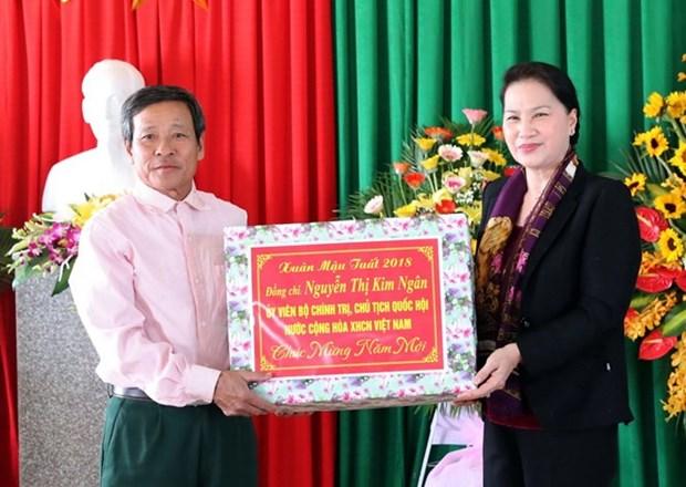 Presidenta del Parlamento vietnamita visita Ha Tinh en ocasion del proximo Tet hinh anh 1