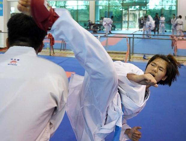Karatekas vietnamitas competiran en torneo en Paris hinh anh 1