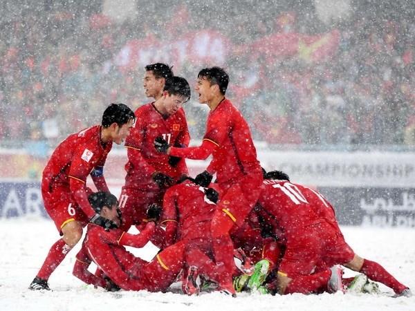 Coraje de equipo sub-23 de Vietnam conmociona a fanaticos en todo el mundo hinh anh 1