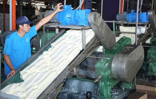 En alza exportaciones de caucho de Camboya hinh anh 1