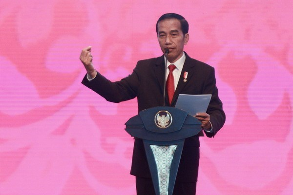Indonesia establecera centro islamico en Afganistan, afirma Joko Widodo hinh anh 1