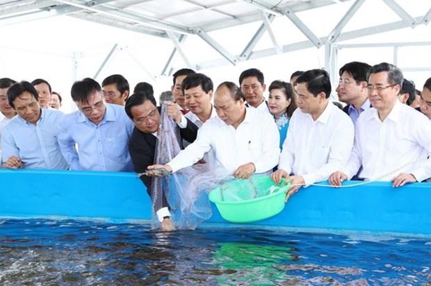 Inician construccion de zona agricola de alta tecnologia en provincia survietnamita hinh anh 1