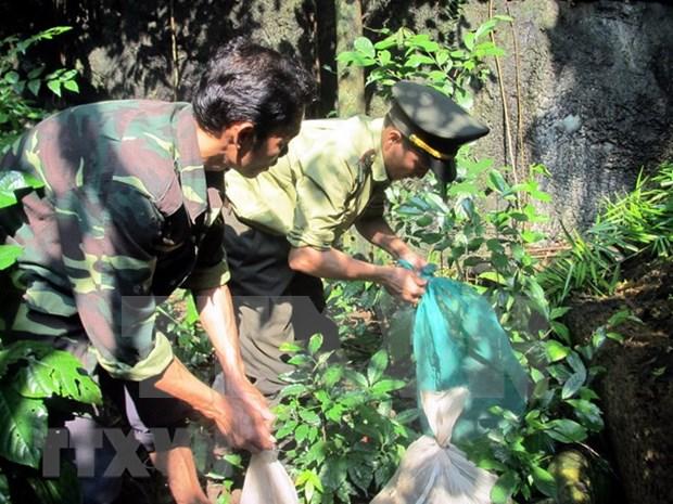 Vietnamitas con alta conciencia en la preservacion de animales raros hinh anh 1
