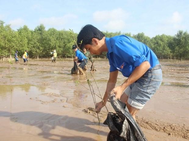 Jovenes vietnamitas contribuyen al cumplimiento de ODS hinh anh 1
