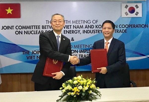 Vietnam y Sudcorea por elevar intercambio comercial a 100 mil millones de USD en 2020 hinh anh 1