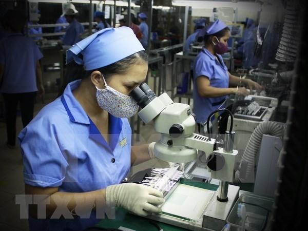 Paises Bajos ayuda a Ciudad Ho Chi Minh en desarrollo de Sistemas Microelectromecanicos hinh anh 1