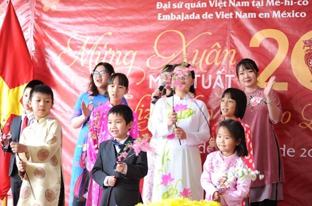 Vietnamitas en Mexico celebran Ano Nuevo Lunar hinh anh 1