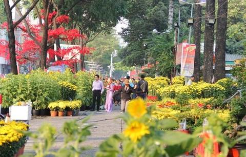 Celebran festival de flores en Ciudad Ho Chi Minh hinh anh 1