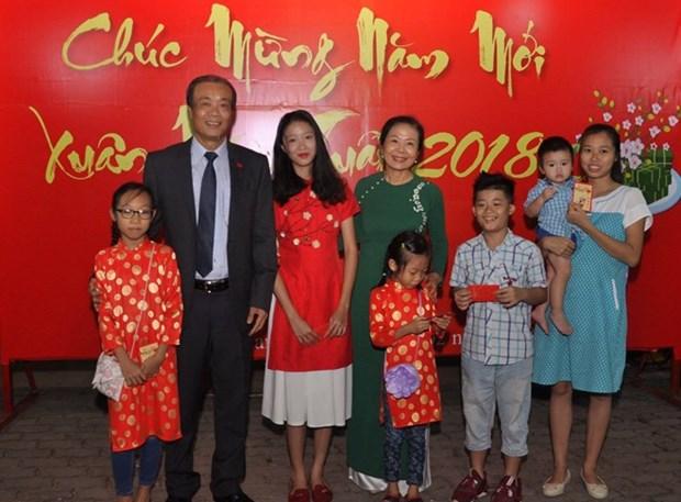 Vietnamitas en Africa celebran el Tet tradicional hinh anh 1