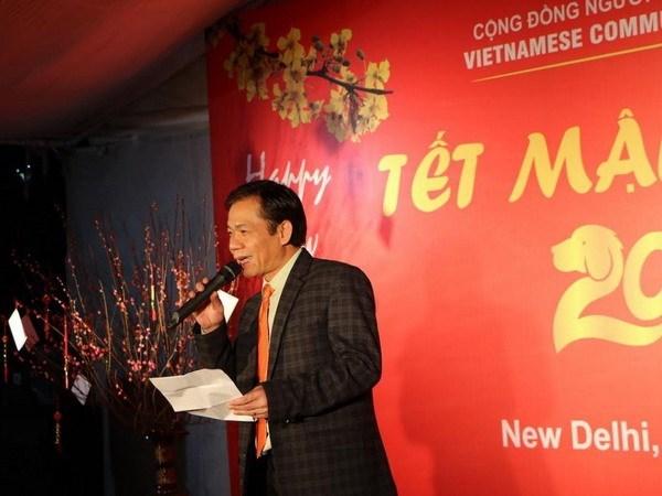 Vietnamitas en India y Rusia celebran el Tet tradicional hinh anh 1