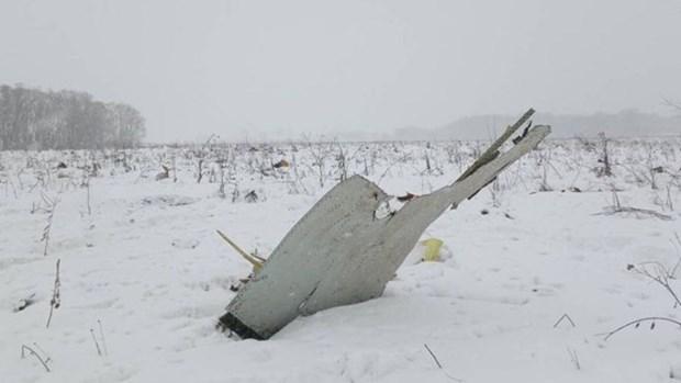 Ninguna victima vietnamita en accidente de avion de Saratov Airlines hinh anh 1
