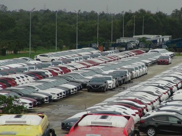 Ventas de automoviles en Vietnam se comporta en enero contrario a lo habitual hinh anh 1