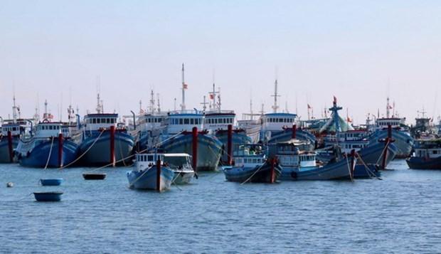 El presupuesto estatal paga el seguro del buque pesquero hinh anh 1