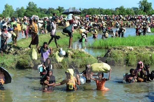 Reino Unido y Myanmar deliberan cuestion de rohinya hinh anh 1