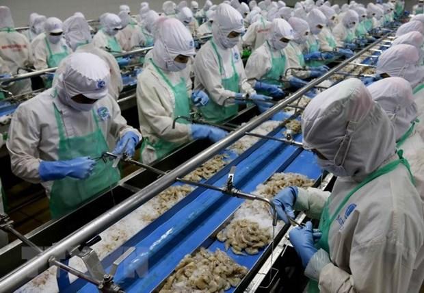Vietnam reporta aumento de exportacion de mariscos hinh anh 1