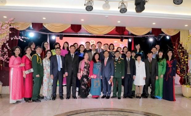 Comunidades vietnamitas en extranjero festejan el Tet de 2018 hinh anh 1